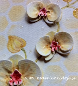 rumena orhideja