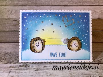 19 hedgehog winter spinner card